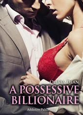 A Possessive Billionaire vol. 11: His, body and soul