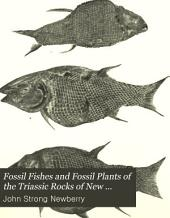 Fossil Fishes and Fossil Plants of the Triassic Rocks of New Jersey and the Connecticut Valley