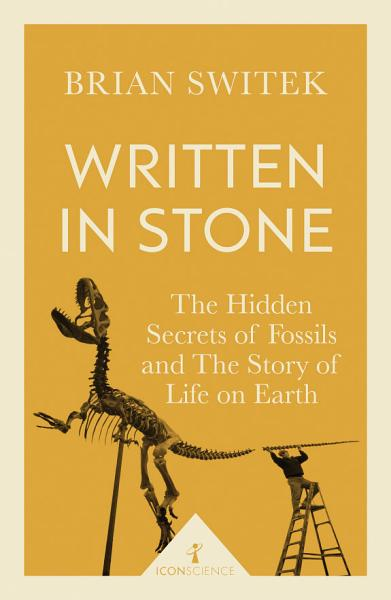 Download Written in Stone  Icon Science  Book