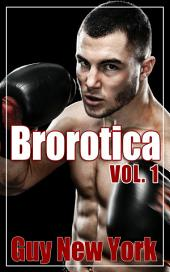 Brorotica Vol.1: Five Stories of Straight Men and Gay Sex