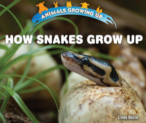 How Snakes Grow Up