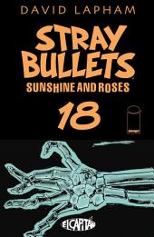 Stray Bullets: Sunshine & Roses #18
