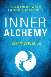 Inner Alchemy Book