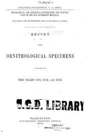 Report upon Ornithological Specimens collected in the years 1871, 1872 and 1873: Engineer Department, U. S. Army. Geographical and Geological Explorations and Surveys west of the one hundredth Meridian