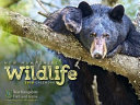 2018 NH Wildlife Calendar
