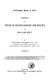 Reports: Volume 10