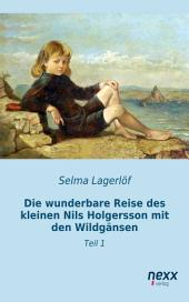 Die wunderbare Reise des kleinen Nils Holgersson mit den Wildgänsen: Teil 1