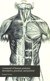 A manual of human anatomy, descriptive, practical, and general