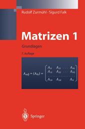 Matrizen und ihre Anwendungen 1: Grundlagen Für Ingenieure, Physiker und Angewandte Mathematiker, Ausgabe 7