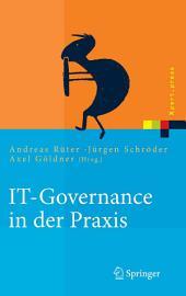 IT-Governance in der Praxis: Erfolgreiche Positionierung der IT im Unternehmen. Anleitung zur erfolgreichen Umsetzung regulatorischer und wettbewerbsbedingter Anforderungen