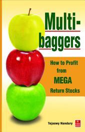 Multibaggers: How to Profit from Mega Return Stocks