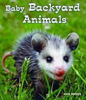 Baby Backyard Animals