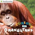Curious About Orangutans