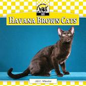 Havana Brown Cats