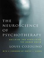 The Neuroscience of Psychotherapy  Healing the Social Brain  Second Edition  PDF