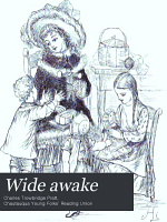 Wide Awake PDF