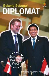 Bekerja Sebagai Diplomat