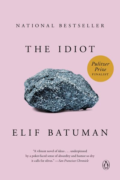 Download The Idiot Book