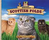 Sweet Scottish Folds