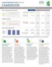 Cameroon: Agricultural R&D Indicators Factsheet