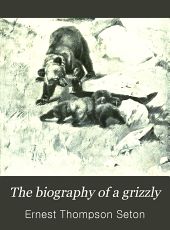 The Biography of a Grizzly: And 75 Drawings