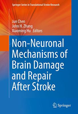 Non-Neuronal Mechanisms of Brain Damage and Repair After Stroke
