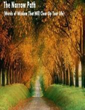 The Narrow Path (Words of Wisdom That Will Clear Up Your Life)