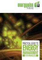Practical Guide to Energy Management for Managers PDF