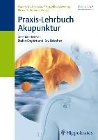 Praxis Lehrbuch Akupunktur PDF