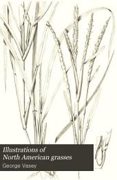 Illustrations of North American grasses: Volume 1