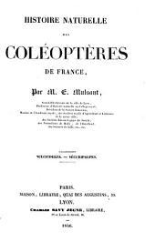 Histoire naturelle des coléoptères de France: Volume3