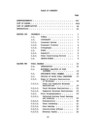 Shona Morphophonemics and Morphosyntax PDF
