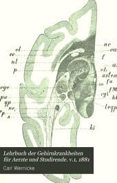 Lehrbuch der Gehirnkrankheiten für Aerzte und Studirende: Band 1