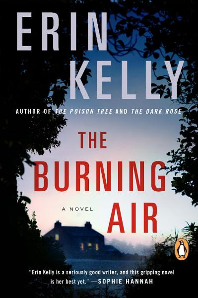 Download The Burning Air Book