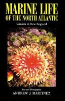 Marine Life of the North Atlantic PDF