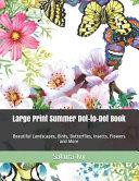 Large Print Summer Dot to Dot Book