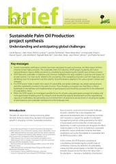 Sustainable Palm Oil Production project synthesis: Understanding and anticipating global challenges