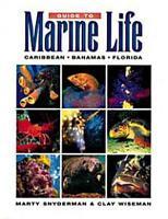 Guide to Marine Life PDF