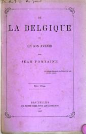 De la Belgique et de son avenir