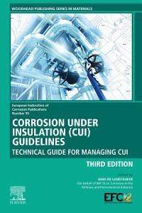 Corrosion Under Insulation  CUI  Guidelines