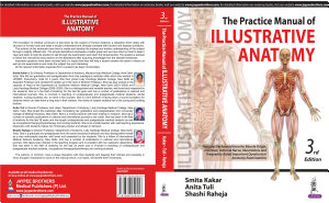The Practice Manual of Illustrative Anatomy PDF