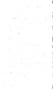 Geschiedenis van Graaf Willem van Holland, Roomsch Koning: Volume 2