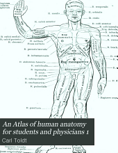 An Atlas of human anatomy for students and physicians 1: Volume 1