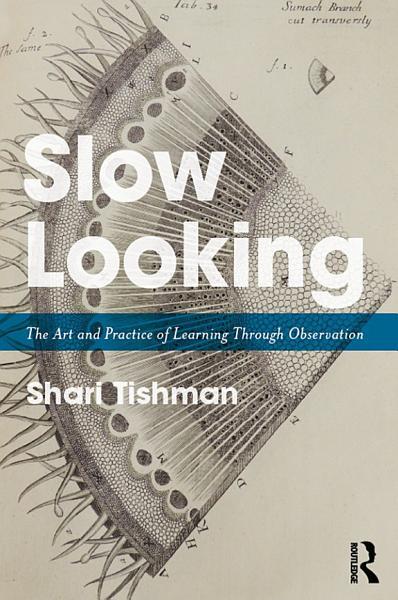 Download Slow Looking Book