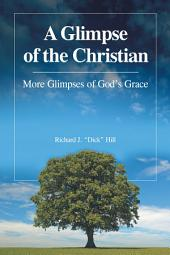 A Glimpse of the Christian: More Glimpses of Gods Grace