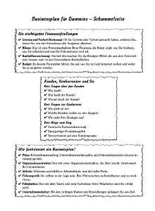 Businessplan f  r Dummies PDF