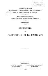 Monographies Industrielles; Aperçu Économique, Technologique Et Commercial: Volume6