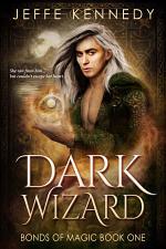 Dark Wizard: A Dark Fantasy Romance