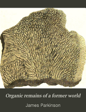 Organic remains of a former world: Volume 2