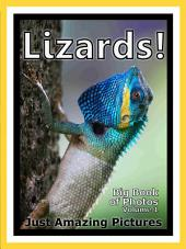 Just Lizards! vol. 1: Big Book of Reptile Lizard Photographs & Pictures